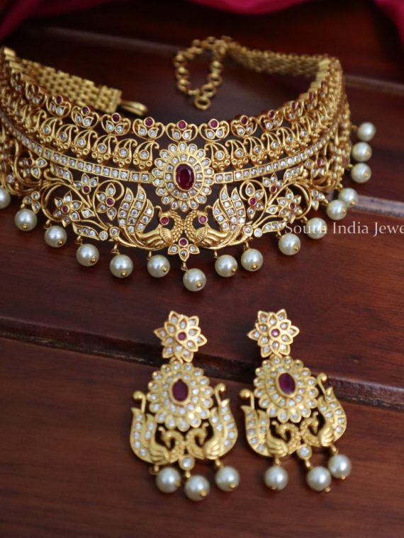 Traditional Wear Beautiful Choker Set